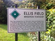 ellis-field